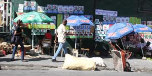 Haïti-Élections : « Un désastre électoral » et « une crise post-électorale » se dessinent, avertit le Rnddh